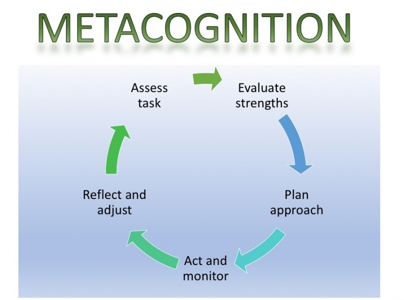 The five metacognitive skills are shown in a cycle.