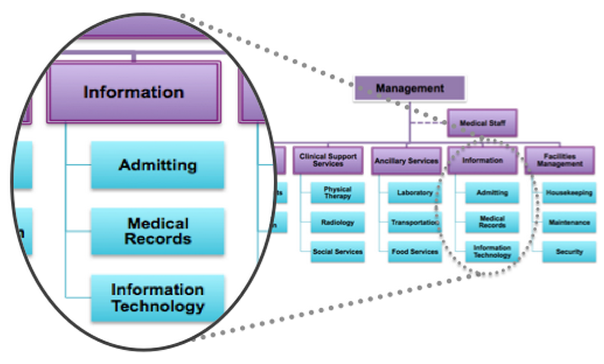 Healthcare administration organization close up of the information division in the hospital organizational chart altavistaventures Gallery
