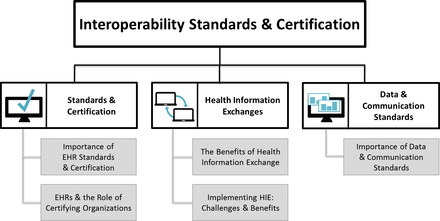 Overview graphic organizer of the pages under interoperability standards and certification 1betcityfo Image collections